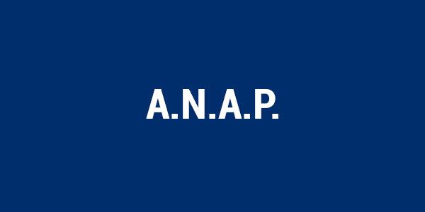 Tasto ANAP hover nl